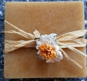 Natural Honey Bee Pumpkin Soap Bar